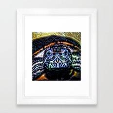 Animal ArtStudio 27516 Turtle Framed Art Print