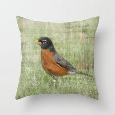 Spring Light Robin Throw Pillow