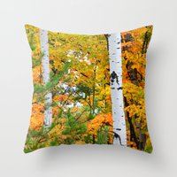 Birch Trees and Autumn Colors Throw Pillow