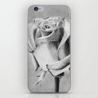 Queen of Flowers iPhone & iPod Skin