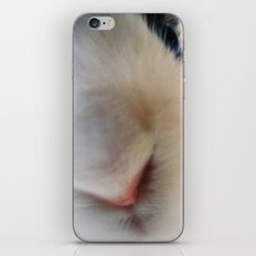 Bunny! iPhone & iPod Skin