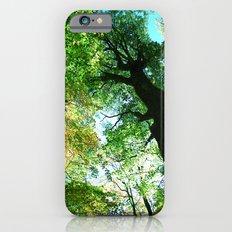 Smoky Mountain Canopy  Slim Case iPhone 6s