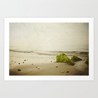 the beach rocks Art Print