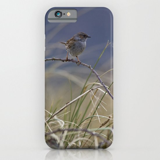 Dunnock iPhone & iPod Case