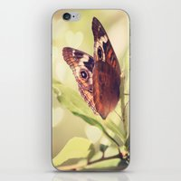 Butterfly Kisses iPhone & iPod Skin