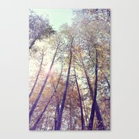 Aboveness  Canvas Print