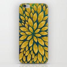 Petal Burst #18 iPhone & iPod Skin