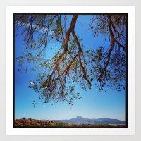 Oak Tree Over Ghost Ranc… Art Print