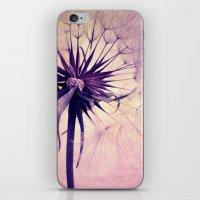 colpo iPhone & iPod Skin