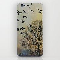 Bird Watching  - JUSTART… iPhone & iPod Skin