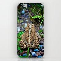 Wild Toad iPhone & iPod Skin
