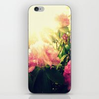Rhododendron Resplendent iPhone & iPod Skin