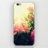 Rhododendron Resplendent iPhone & iPod Skin