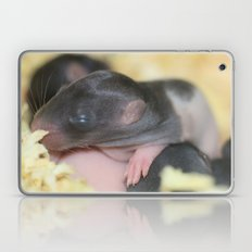 These don't look like pups to me... Laptop & iPad Skin