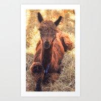 Llama Tude Art Print