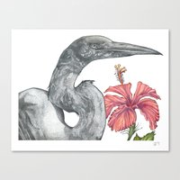 Egret with Hibiscus Canvas Print