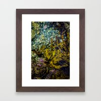 rockpool Framed Art Print