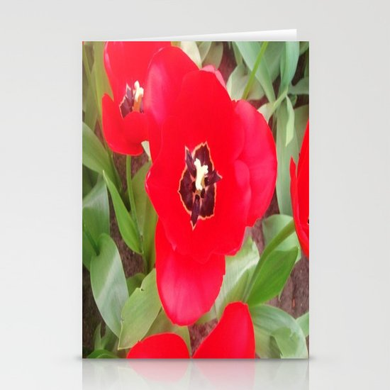 Flowers #2 Stationery Card