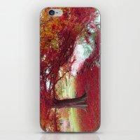 Red Autumn  iPhone & iPod Skin