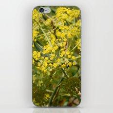Yellow Spray iPhone & iPod Skin