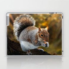 ANIMALS-Squirrel nutkin Laptop & iPad Skin