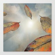 As You Fall Canvas Print