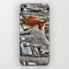 Caught in the Act iPhone & iPod Skin