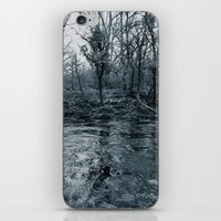 riverside iPhone & iPod Skin