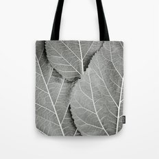 The Lines We Follow Tote Bag