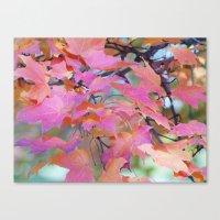 Autumn Rainbow Colors Canvas Print