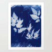 Blue Cyanotype Of Leaves Art Print
