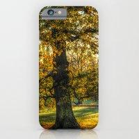 Autumn In The Park iPhone 6 Slim Case