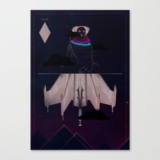 Stealth Canvas Print