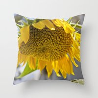 Throw Pillow featuring Take Cover [SUNFLOWER] by David Nuh Omar