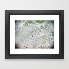 Dandelion Water Drop Macro 9 Framed Art Print
