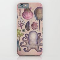 iPhone Cases featuring Aequoreus vita V / Marine life V by Vladimir Stankovic