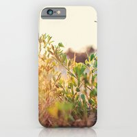 Sun Rising iPhone 6 Slim Case