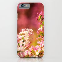 Pretty and Pink crab apple blossoms iPhone 6 Slim Case