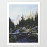 Rocky Mountain Creek Art Print