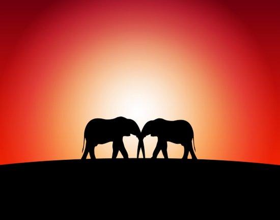 Elephant Sunset Art Print