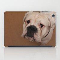 My dog Konstantin iPad Case