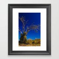 Naked Tree Framed Art Print