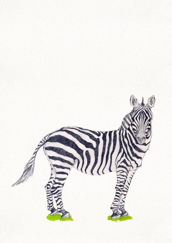 Zebra Sketch Art Print