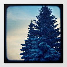 blue winter sky Canvas Print