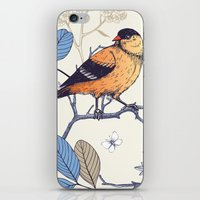 Birdie Pattern iPhone & iPod Skin