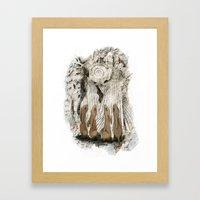 Hares Framed Art Print