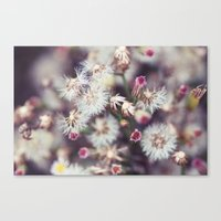 Beautifully Chaotic Canvas Print