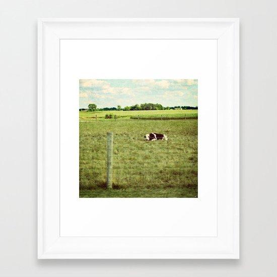 resting cow Framed Art Print
