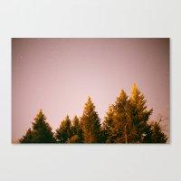 /-/ Canvas Print