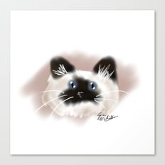 Crazy Siamese Canvas Print